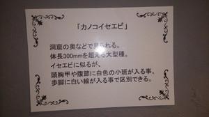20160729_31